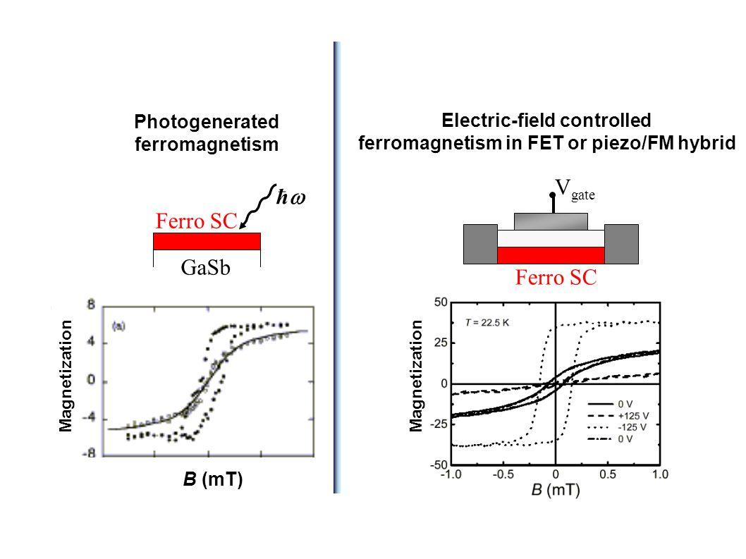 Electric-field controlled ferromagnetism in FET or piezo/FM hybrid V gate Ferro SC Photogenerated ferromagnetism Ferro SC GaSb B (mT) ħħ Magnetization