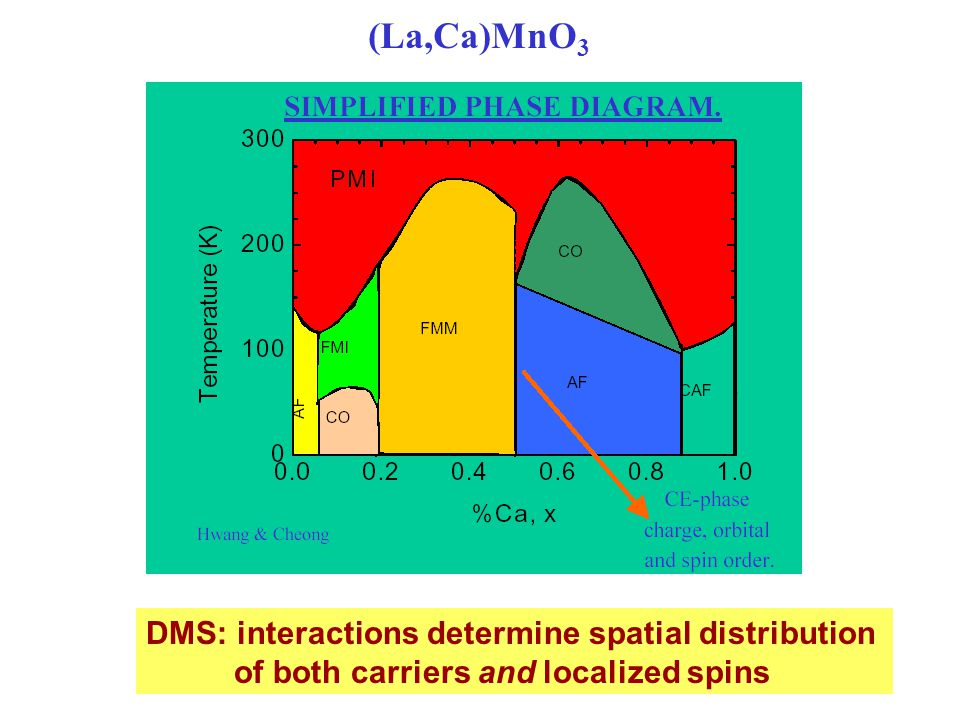 (La,Ca)MnO 3 DMS: interactions determine spatial distribution of both carriers and localized spins