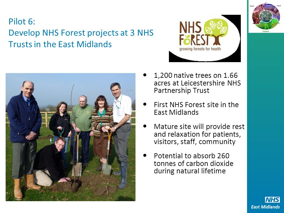 Pilot 6: Develop NHS Forest projects at 3 NHS Trusts in the East Midlands 1,200 native trees on 1.66 acres at Leicestershire NHS Partnership Trust First NHS Forest site in the East Midlands Mature site will provide rest and relaxation for patients, visitors, staff, community Potential to absorb 260 tonnes of carbon dioxide during natural lifetime