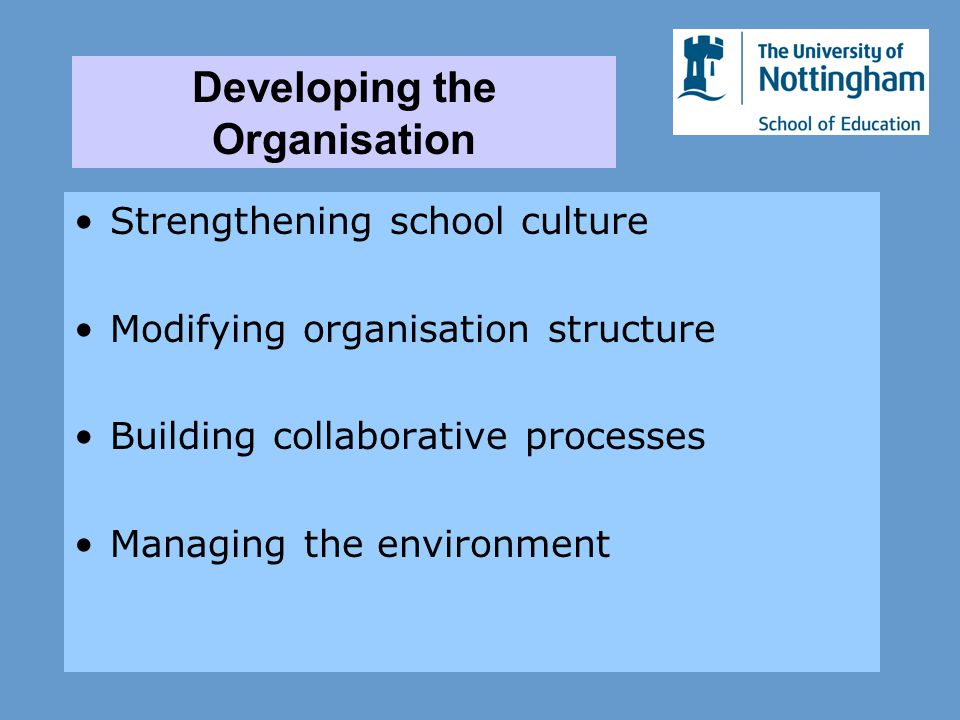 Strengthening school culture Modifying organisation structure Building collaborative processes Managing the environment Developing the Organisation