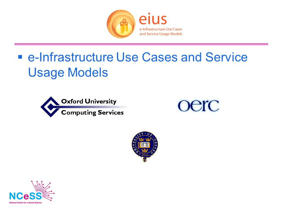 e-Infrastructure Use Cases and Service Usage Models