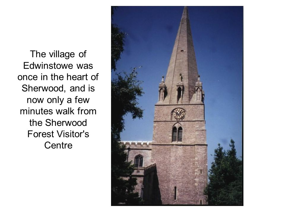 The village of Edwinstowe was once in the heart of Sherwood, and is now only a few minutes walk from the Sherwood Forest Visitor's Centre