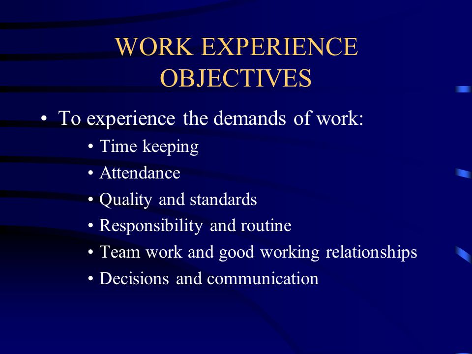 WORK EXPERIENCE OBJECTIVES To experience the demands of work: Time keeping Attendance Quality and standards Responsibility and routine Team work and g