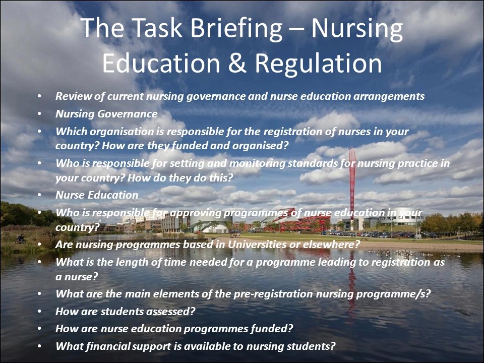 The Task Briefing – Nursing Education & Regulation Review of current nursing governance and nurse education arrangements Nursing Governance Which orga