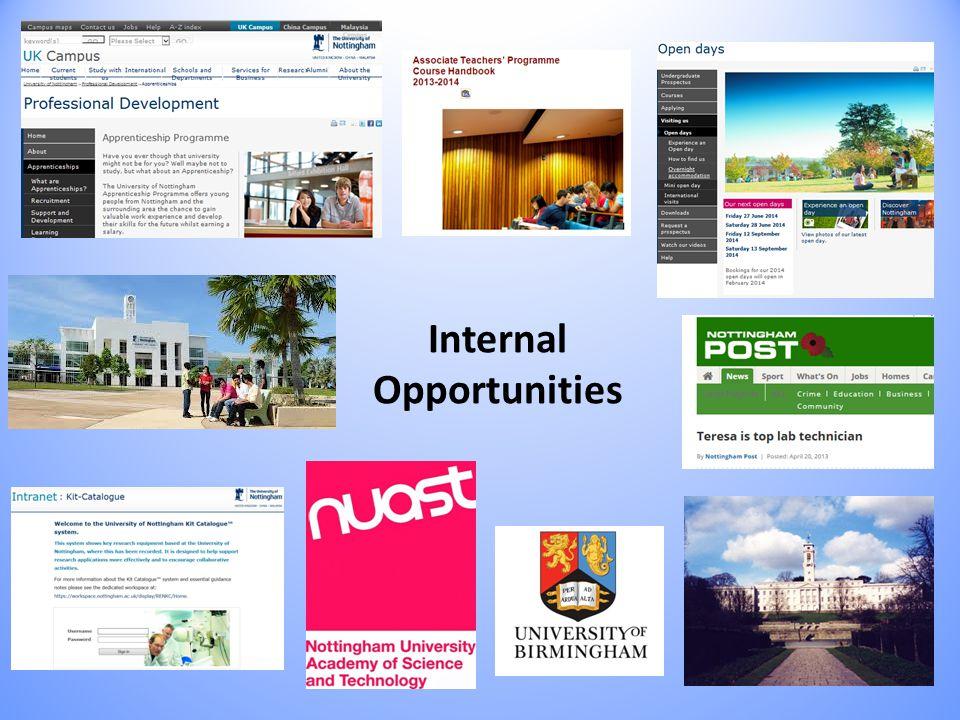 Internal Opportunities