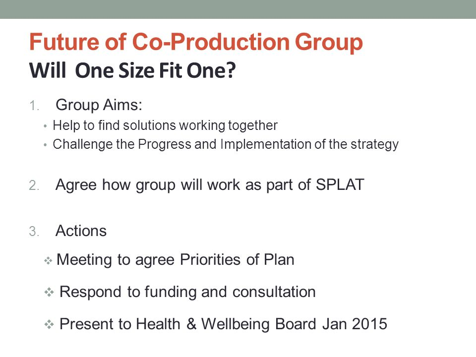 Future of Co-Production Group Will One Size Fit One? 1. Group Aims: Help to find solutions working together Challenge the Progress and Implementation