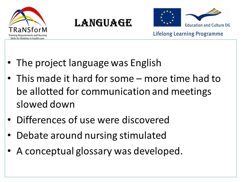 Language The project language was English This made it hard for some – more time had to be allotted for communication and meetings slowed down Differences of use were discovered Debate around nursing stimulated A conceptual glossary was developed.