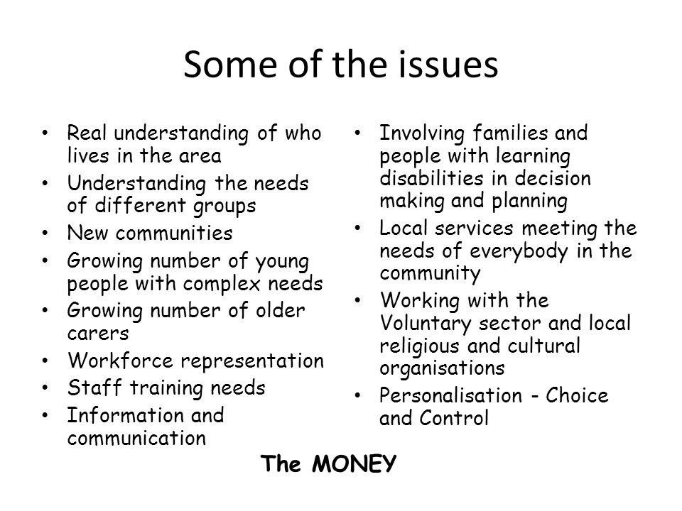 Some of the issues Real understanding of who lives in the area Understanding the needs of different groups New communities Growing number of young people with complex needs Growing number of older carers Workforce representation Staff training needs Information and communication Involving families and people with learning disabilities in decision making and planning Local services meeting the needs of everybody in the community Working with the Voluntary sector and local religious and cultural organisations Personalisation - Choice and Control The MONEY