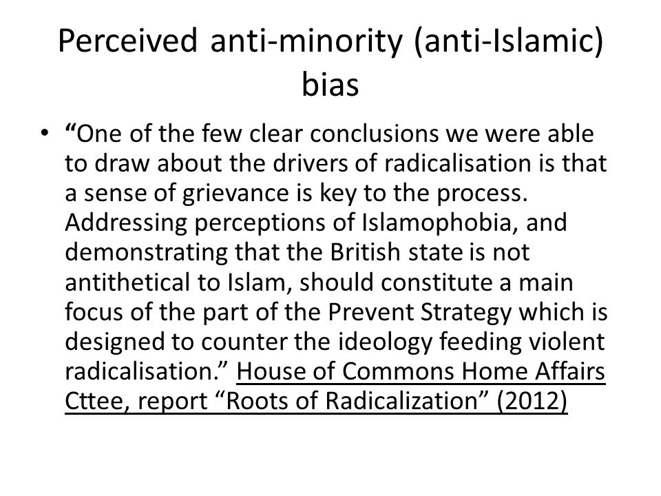 Perceived anti-minority (anti-Islamic) bias One of the few clear conclusions we were able to draw about the drivers of radicalisation is that a sense of grievance is key to the process.