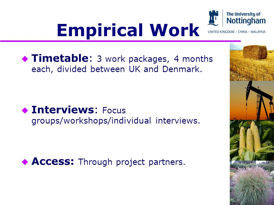 Empirical Work u Timetable: 3 work packages, 4 months each, divided between UK and Denmark.