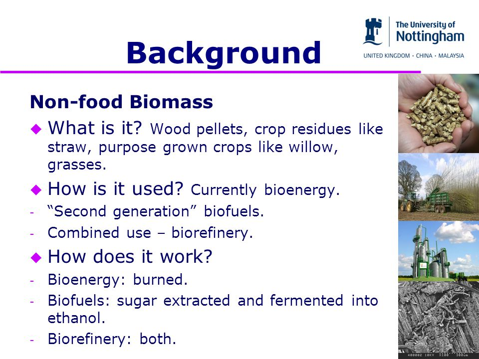 Non-food Biomass u What is it.