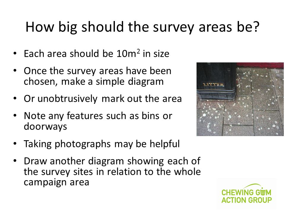 How big should the survey areas be.