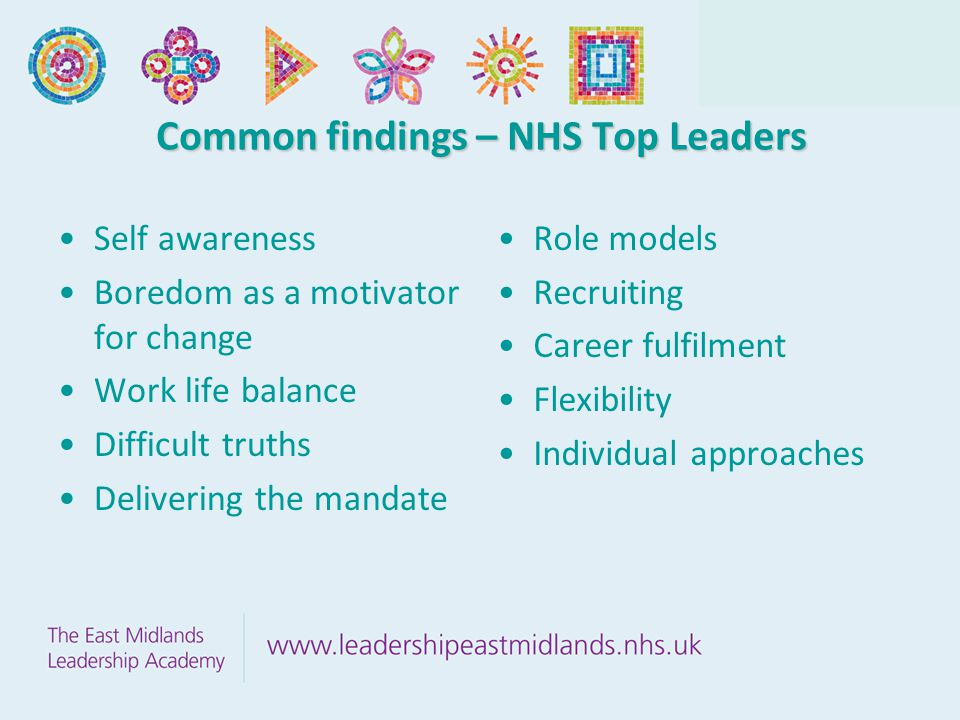 Common findings – NHS Top Leaders Self awareness Boredom as a motivator for change Work life balance Difficult truths Delivering the mandate Role models Recruiting Career fulfilment Flexibility Individual approaches