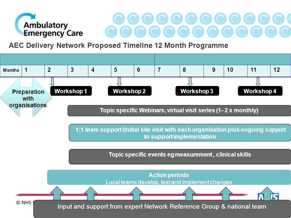 AEC Delivery Network Proposed Timeline 12 Month Programme Months 123456789101112 Workshop 1 Action periods Local teams develop, test and implement cha