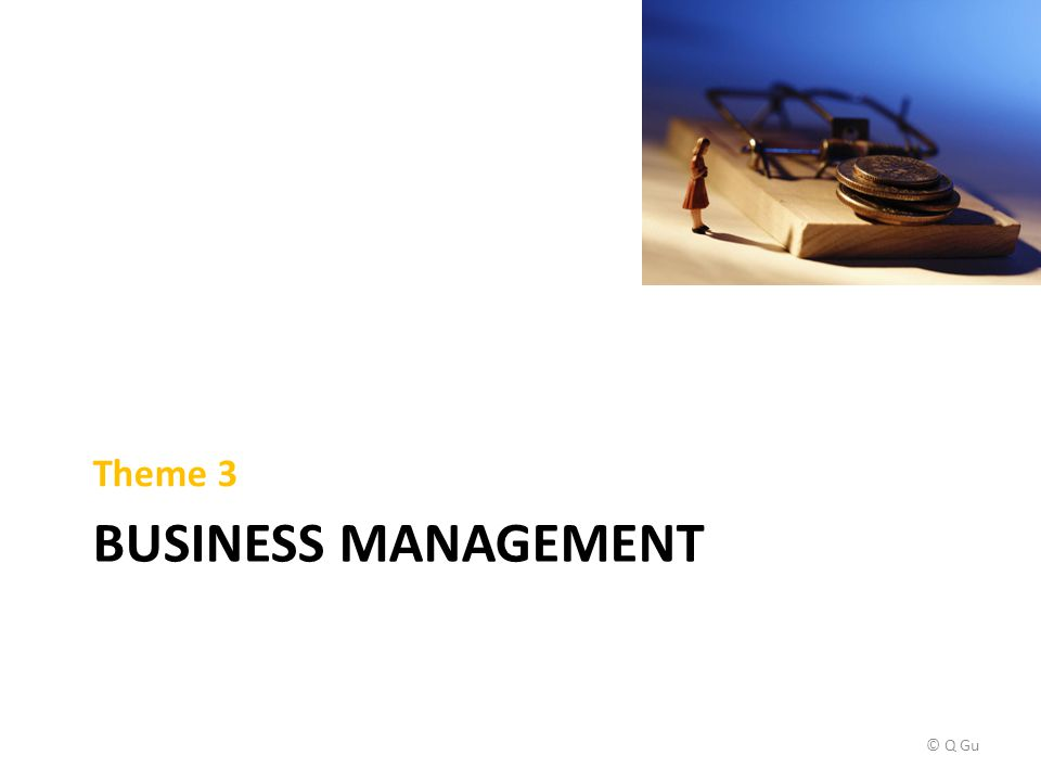 BUSINESS MANAGEMENT Theme 3 © Q Gu