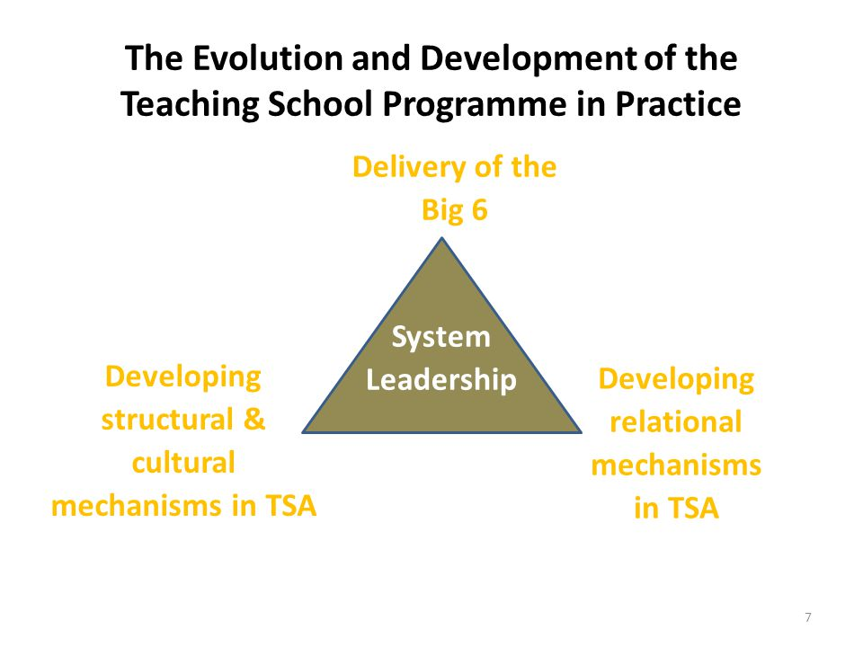 The Evolution and Development of the Teaching School Programme in Practice 7 System Leadership Delivery of the Big 6 Developing relational mechanisms in TSA Developing structural & cultural mechanisms in TSA