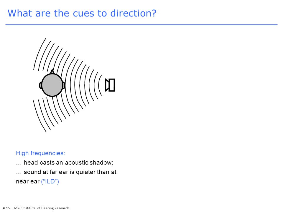 # 15 … MRC Institute of Hearing Research High frequencies: … head casts an acoustic shadow; … sound at far ear is quieter than at near ear ( ILD ) What are the cues to direction?