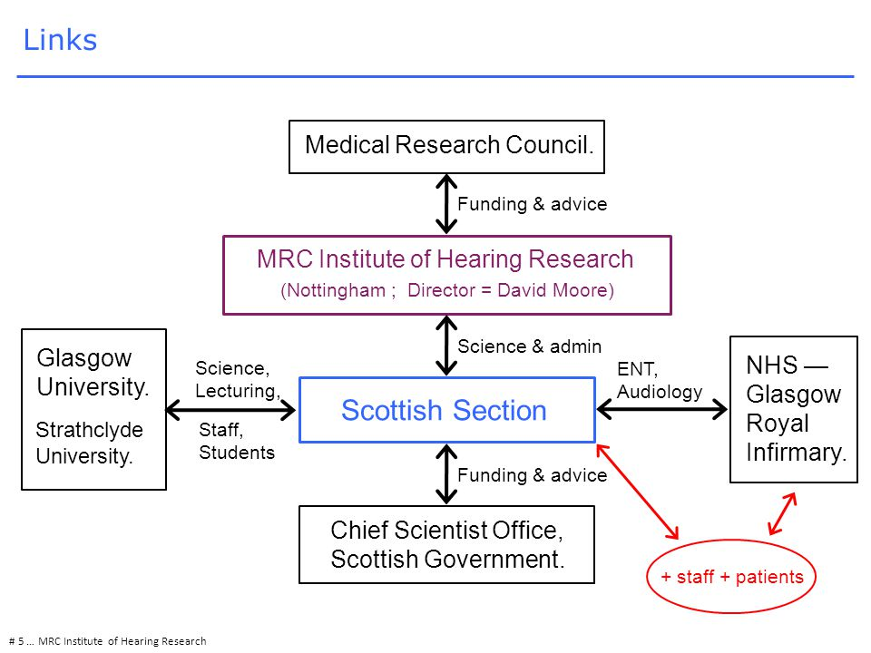 # 5 … MRC Institute of Hearing Research Links Chief Scientist Office, Scottish Government.