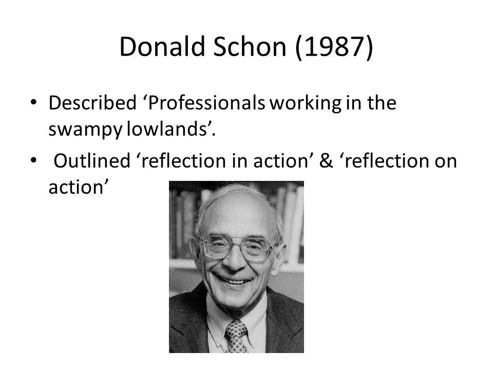 Donald Schon (1987) Described 'Professionals working in the swampy lowlands'.