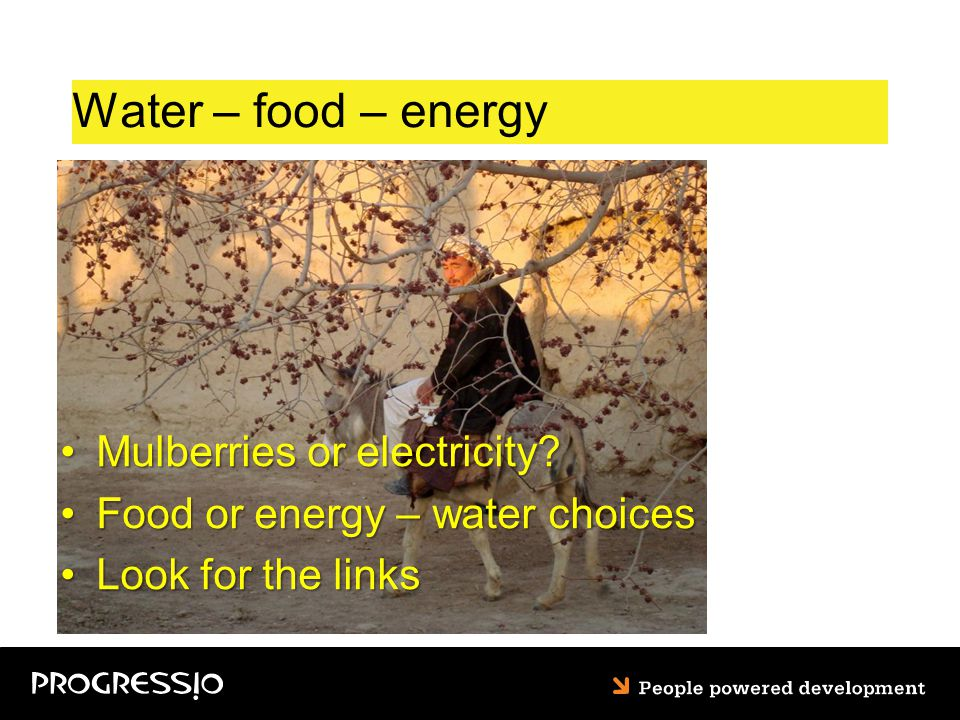 Water – food – energy Mulberries or electricity Mulberries or electricity.