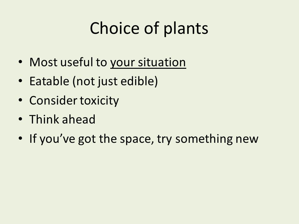 Choice of plants Most useful to your situation Eatable (not just edible) Consider toxicity Think ahead If you've got the space, try something new