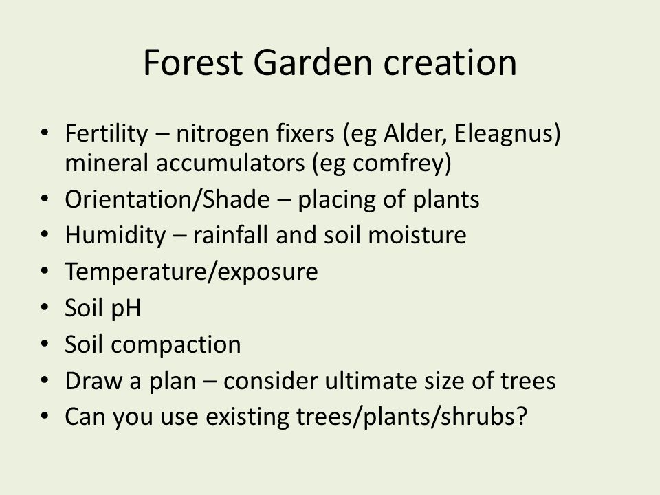 Forest Garden creation Fertility – nitrogen fixers (eg Alder, Eleagnus) mineral accumulators (eg comfrey) Orientation/Shade – placing of plants Humidi