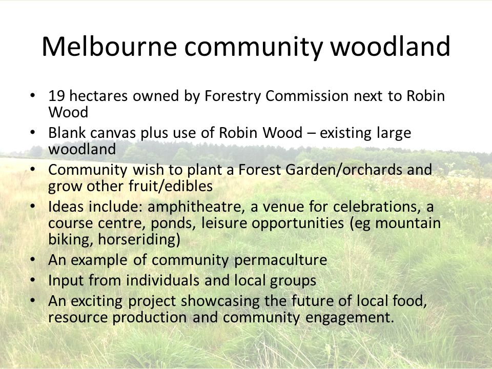 Melbourne community woodland 19 hectares owned by Forestry Commission next to Robin Wood Blank canvas plus use of Robin Wood – existing large woodland