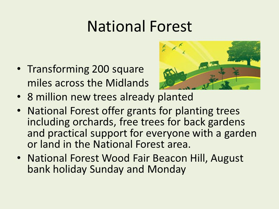 National Forest Transforming 200 square miles across the Midlands 8 million new trees already planted National Forest offer grants for planting trees