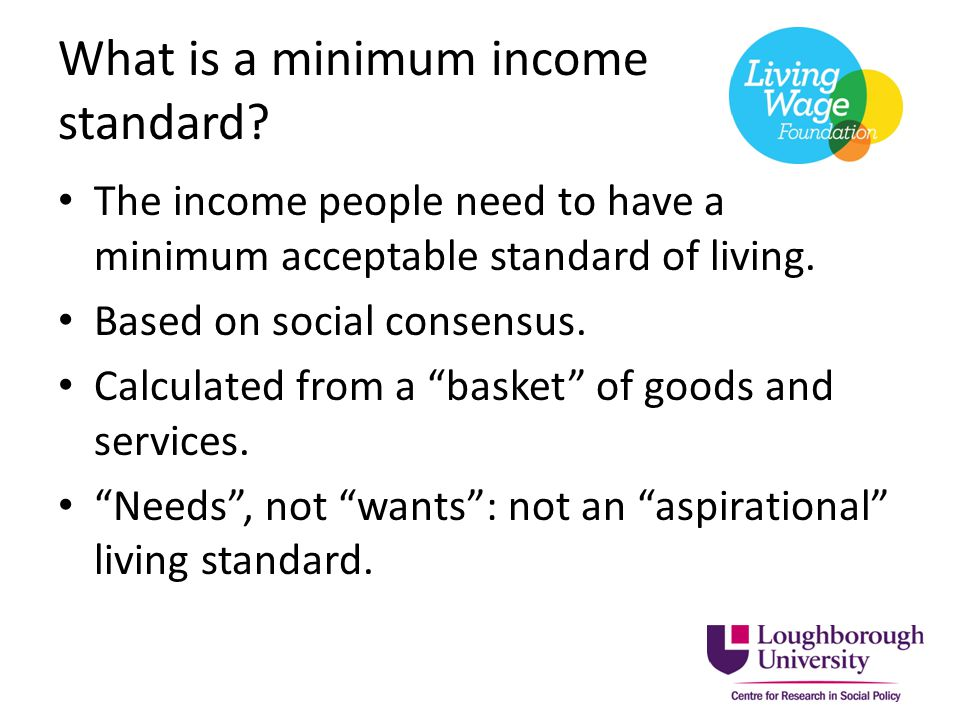What is a minimum income standard.