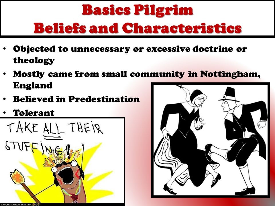 Basics Pilgrim Beliefs and Characteristics Objected to unnecessary or excessive doctrine or theology Mostly came from small community in Nottingham, E