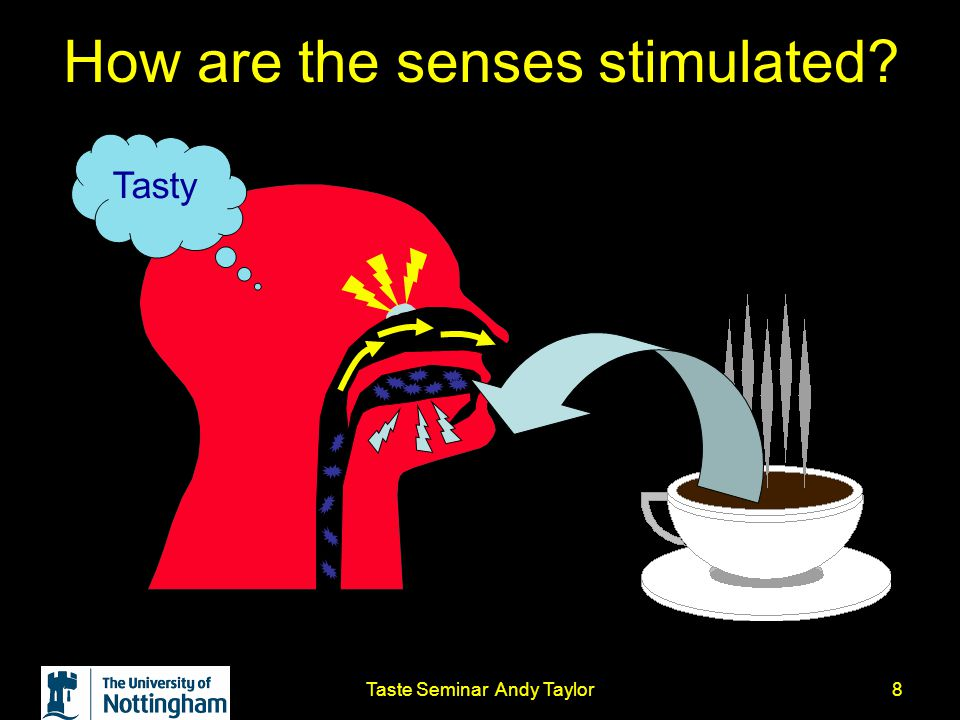 Taste Seminar Andy Taylor8 How are the senses stimulated? Tasty