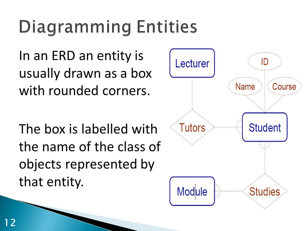 In an ERD an entity is usually drawn as a box with rounded corners. The box is labelled with the name of the class of objects represented by that enti