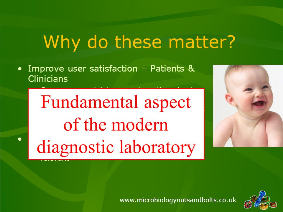 www.microbiologynutsandbolts.co.uk What to automate.