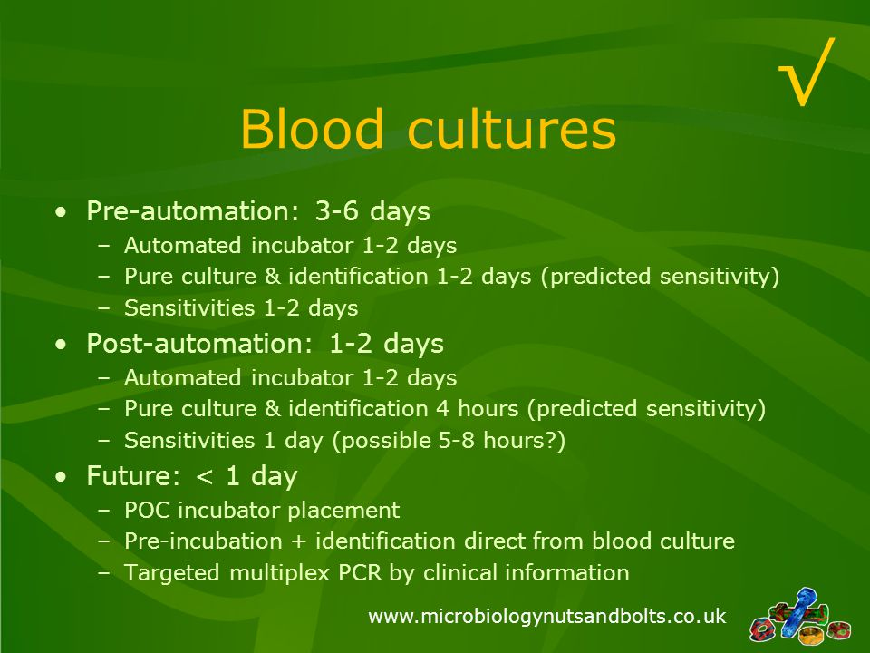 www.microbiologynutsandbolts.co.uk Cerebrospinal fluids Pre-automation: 2-10 days –Culture & sensitivity 2 days –Molecular detection 3-10 days Post-automation: 1-2 days –Culture & sensitivity 2 days –Molecular detection 1-2 days Future: < 1 day –Targeted multiplex PCR by clinical information √