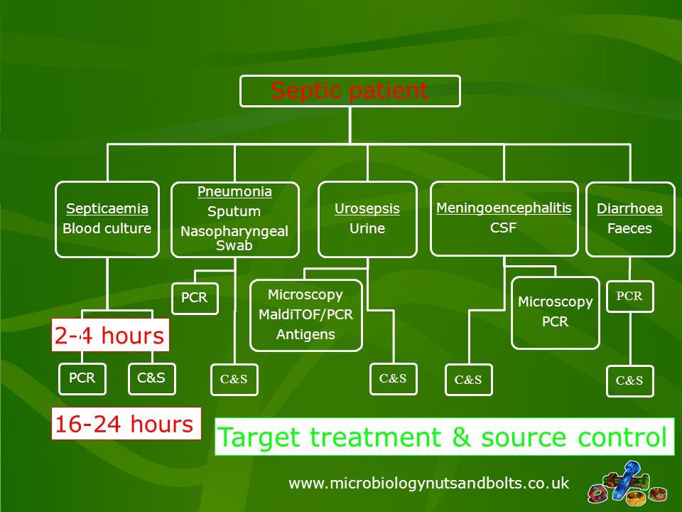 www.microbiologynutsandbolts.co.uk Sepsis diagnoses 2-4 hours –Pneumonia S.