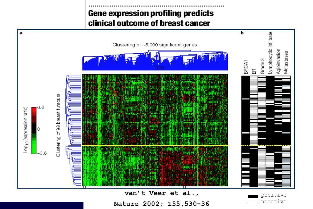 van't Veer et al., Nature 2002; 155,530-36 positive negative