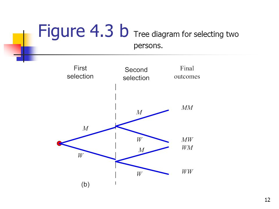 12 Figure 4.3 b Tree diagram for selecting two persons.