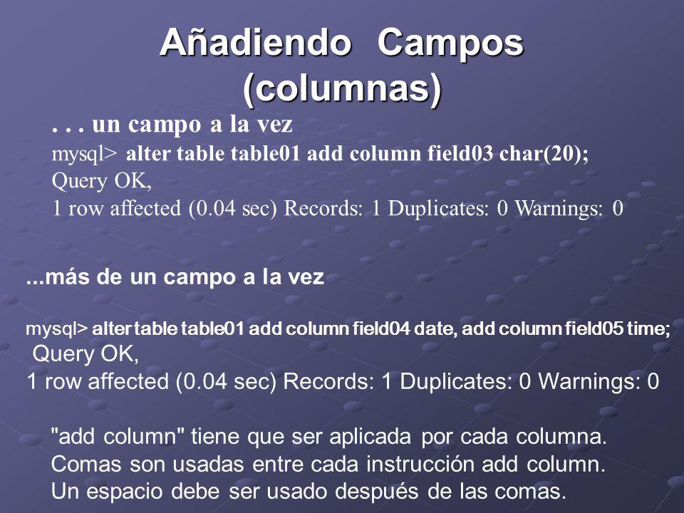 Añadiendo Campos (columnas)...