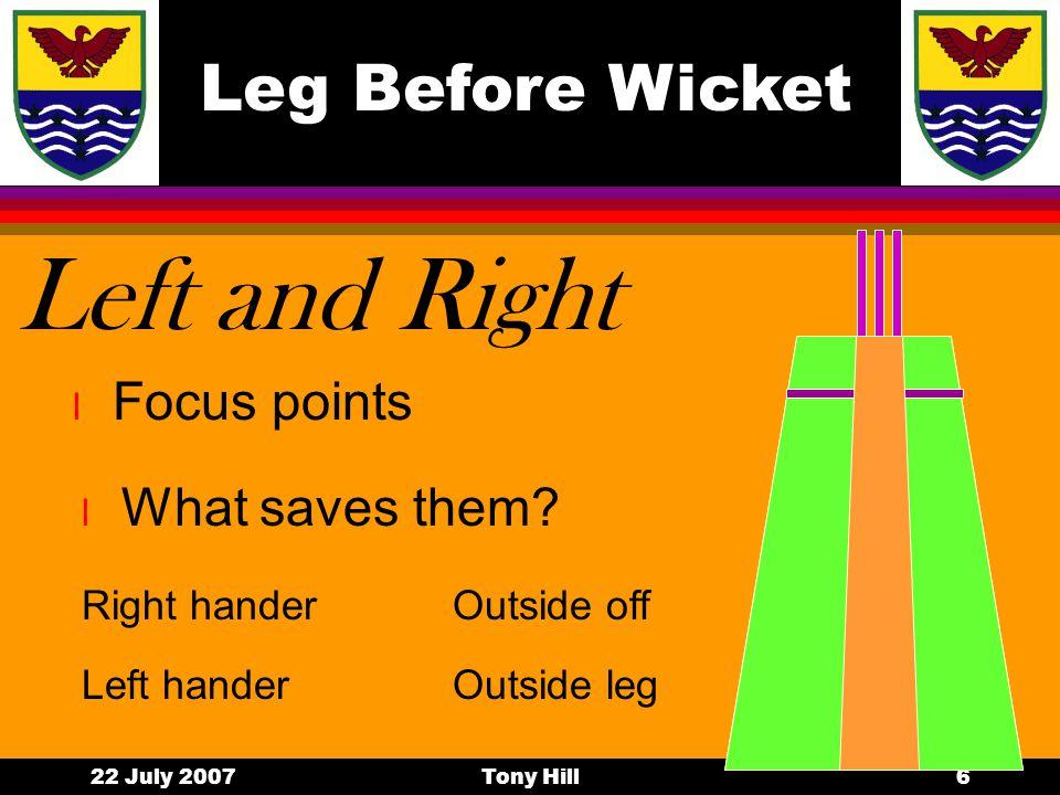 Leg Before Wicket 22 July 2007Tony Hill5 Will it hit.