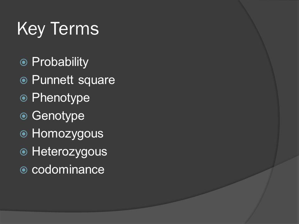 Key Terms  Probability  Punnett square  Phenotype  Genotype  Homozygous  Heterozygous  codominance