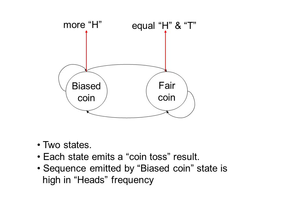 Biased coin Fair coin more H equal H & T Two states.