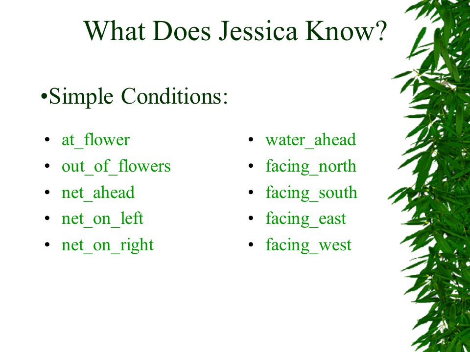 What Does Jessica Know.