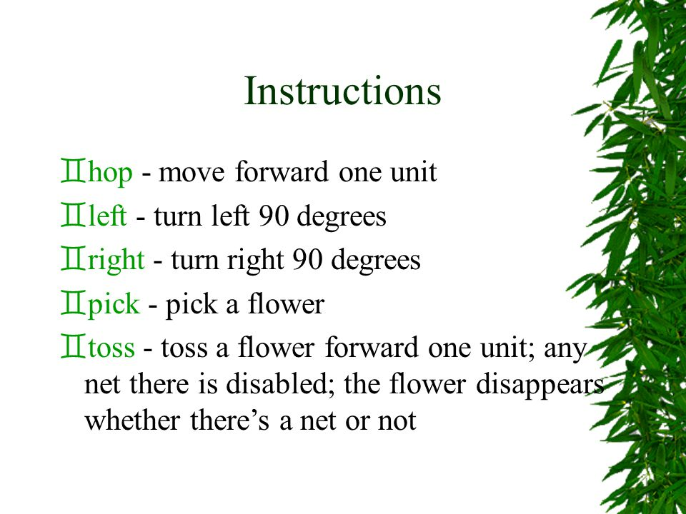Instructions `hop - move forward one unit `left - turn left 90 degrees `right - turn right 90 degrees `pick - pick a flower `toss - toss a flower forward one unit; any net there is disabled; the flower disappears whether there's a net or not