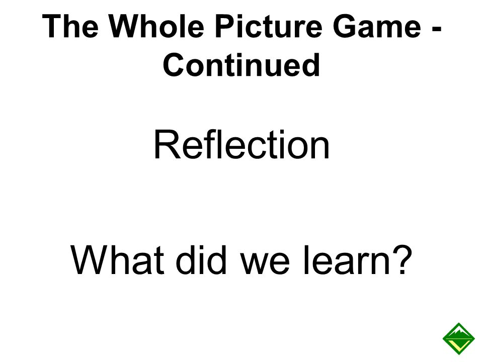 The Whole Picture Game - Continued Reflection What did we learn?