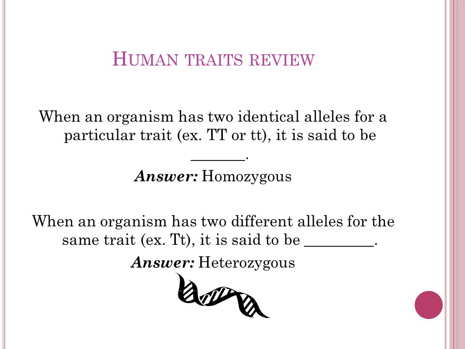 H UMAN TRAITS REVIEW When an organism has two identical alleles for a particular trait (ex.
