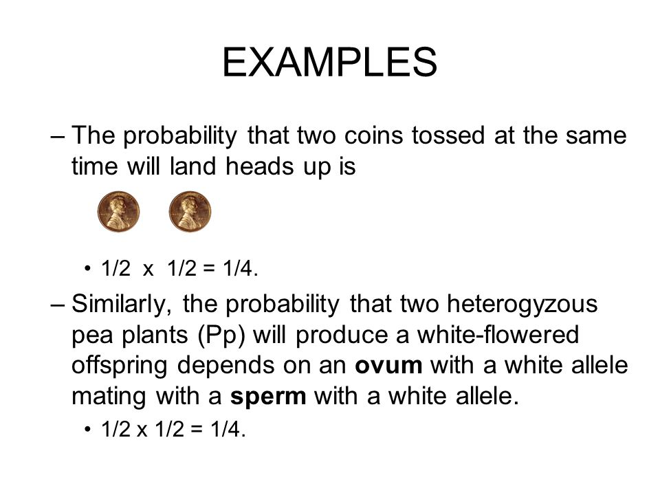 EXAMPLES –The probability that two coins tossed at the same time will land heads up is 1/2 x 1/2 = 1/4.