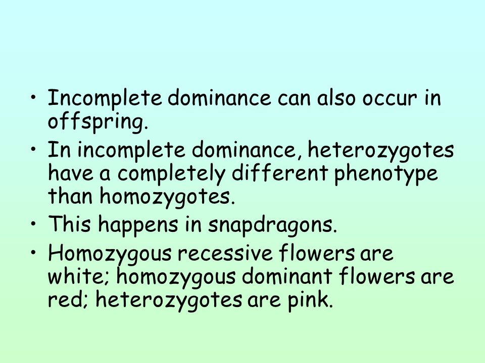 Incomplete dominance can also occur in offspring. In incomplete dominance, heterozygotes have a completely different phenotype than homozygotes. This