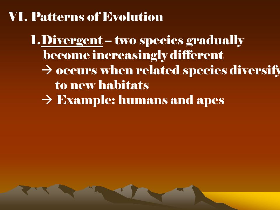 VI. Patterns of Evolution 1.Divergent – two species gradually become increasingly different  occurs when related species diversify to new habitats 