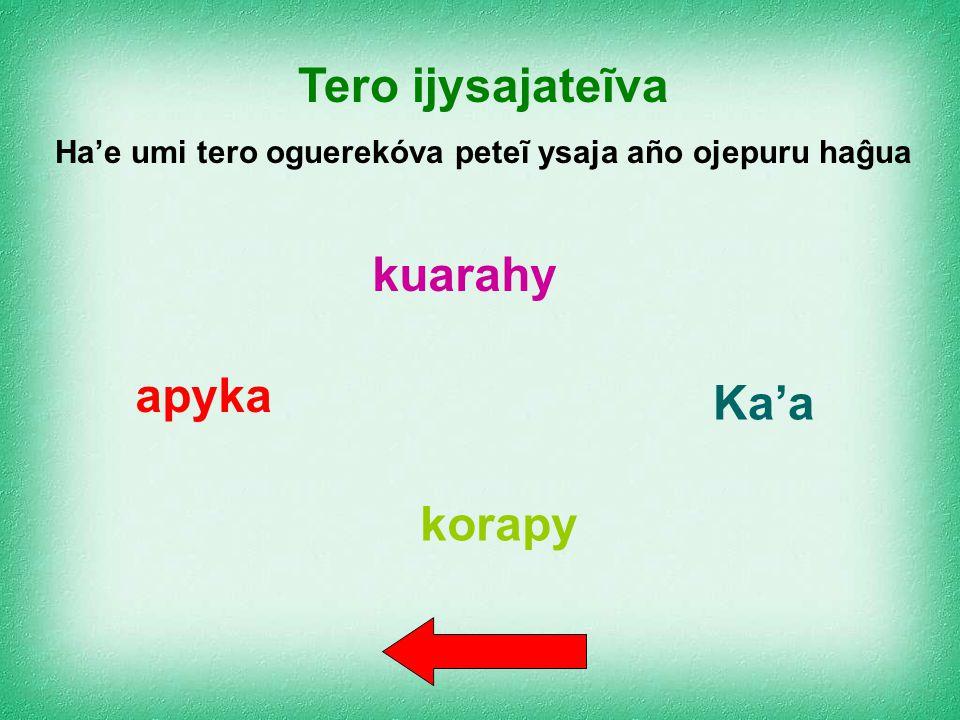 Tero ijysajakõiva – sustantivo biforme Tero ijysajarundýva – sustantivo cuatriforme Tero ijysajateĩva – sustantivo uniforme Tero ijysaja'apýva – susta