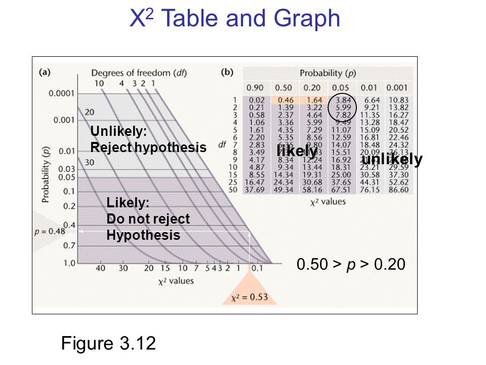 X 2 Table and Graph Unlikely: Reject hypothesis Likely: Do not reject Hypothesis likely unlikely 0.50 > p > 0.20 Figure 3.12